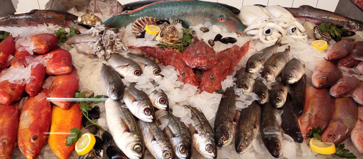 Die Fischauswahl von Mitte Meer ist geradezu legendär. Fischladen Berlin