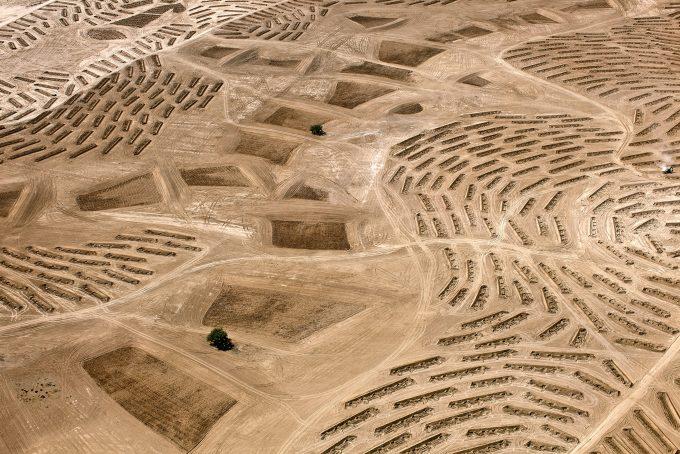 From the Desert Bloom series, 2011 Ausstellung ªThis Place´ vom 7. Juni 2019 bis 5. Januar 2020 (https://www.jmberlin.de/this-place):     Fazal Sheikh, From the Desert Bloom series, 10/9/2011  Location Information: Latitude: 31∞21'7
