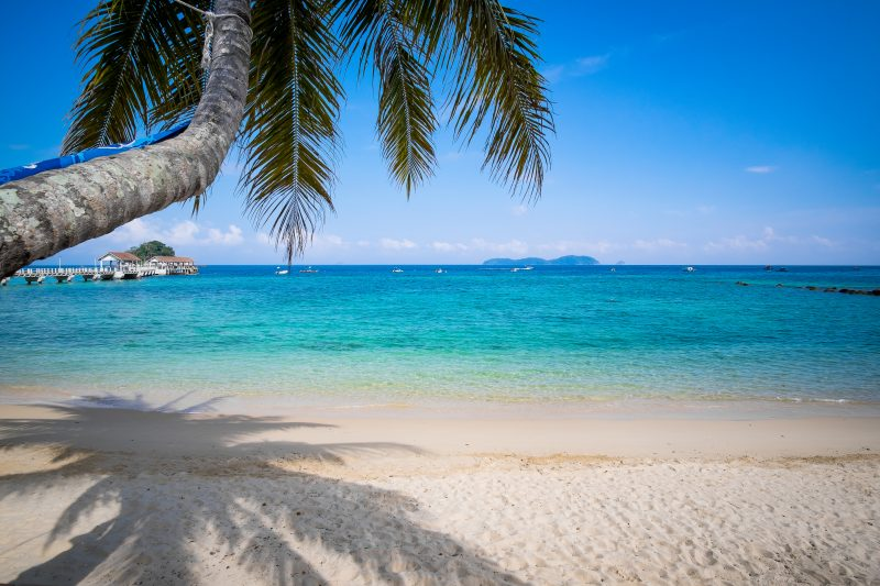 Palme am Tioman Island beach mit Bilck auf das blaue Meer.