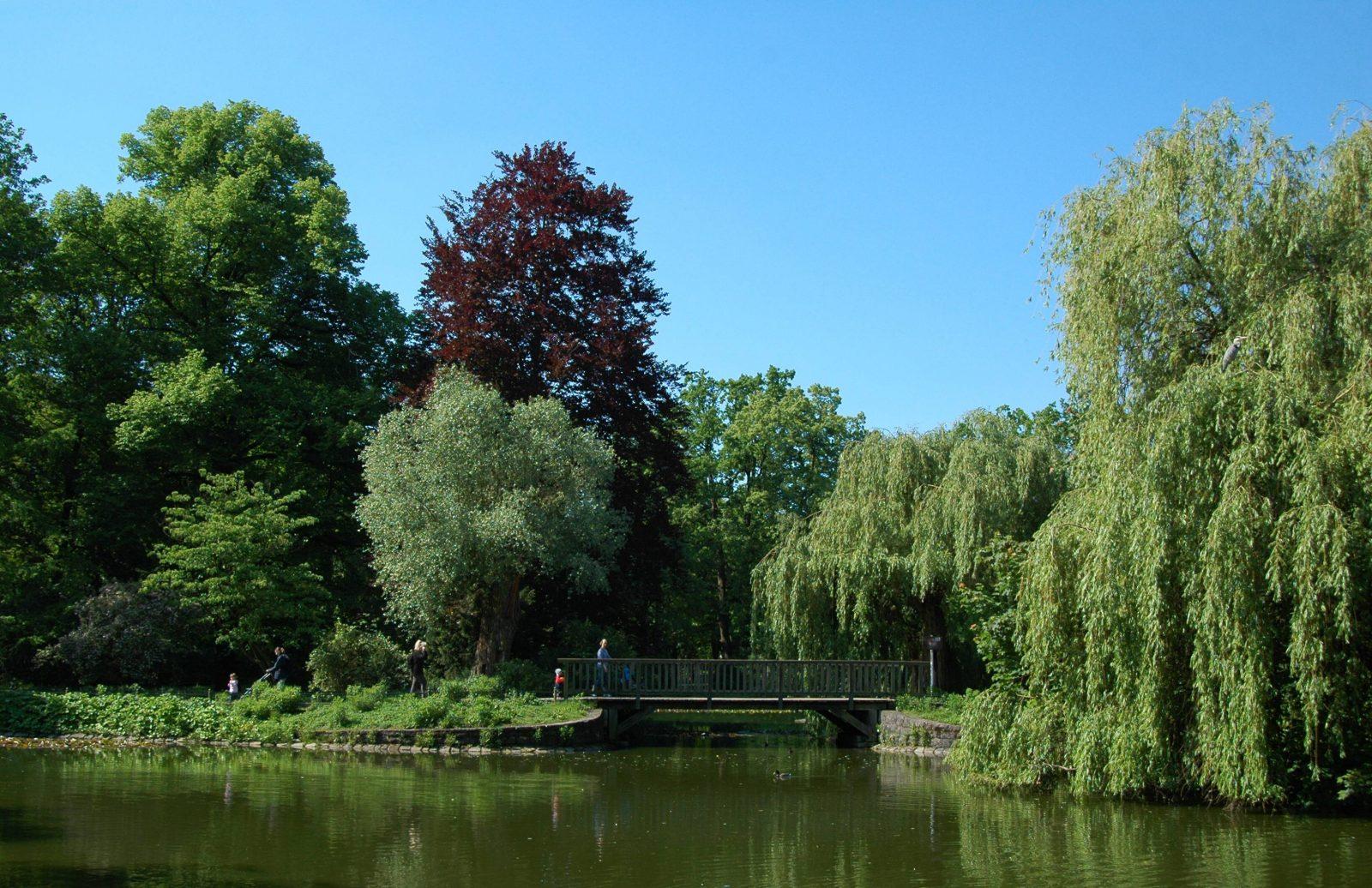 Teich im Stadtpark Steglitz in Berlin.  Fotot: imago/Schöning