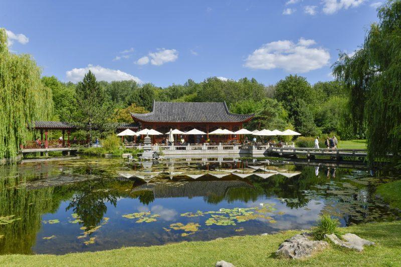 In den Berliner Gärten der Welt gibt es internationale Gartenkunst  zu bewundern.
