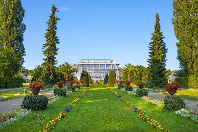 Für kleines Geld gibt es hier viel zu sehen: Zudem bietet der Botanische Garten Berlin regelmäßige Natur-Führungen an.