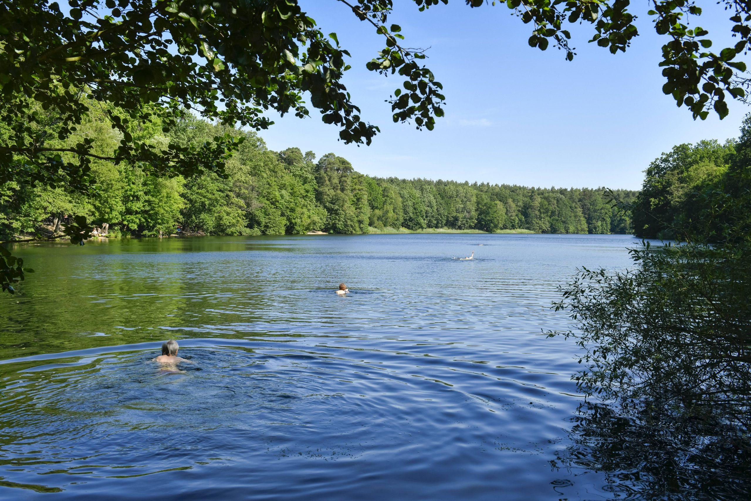 Die Krumme Lanke in Zehlendorf – dem See wurden anders als anderen Badeseen sogar Lieder gewidmet. Foto: Imago/Schöning