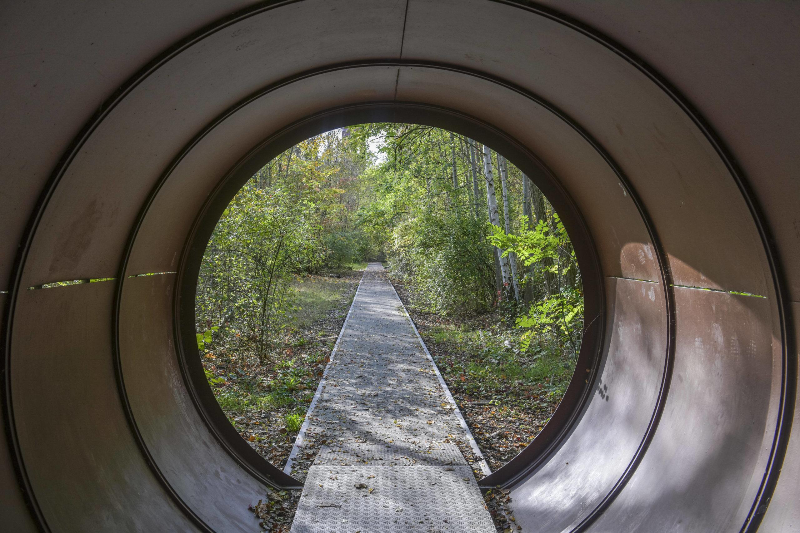 Durch Eisenröhren hindurch und über Stege und Gitter am Boden bewegt ihr euch durch den Natur-Park Südgelände. Foto: Imago/Schöning