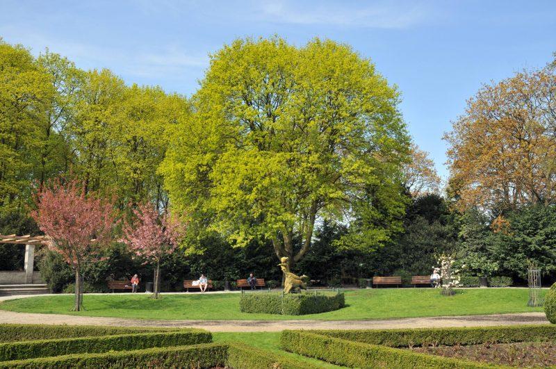 Die schönsten Laufstrecken Berlins: Der Rosengarten und die verschlungenen Wege machen den Humboldthain zu einem der besten Lauf-Spots der Stadt.