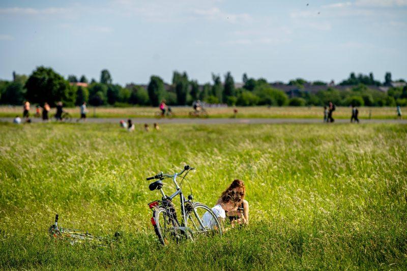 Unterschätzter Lebensraum: Das Tempelhofer Feld ist nicht für Menschen ein Erholungsgebiet.