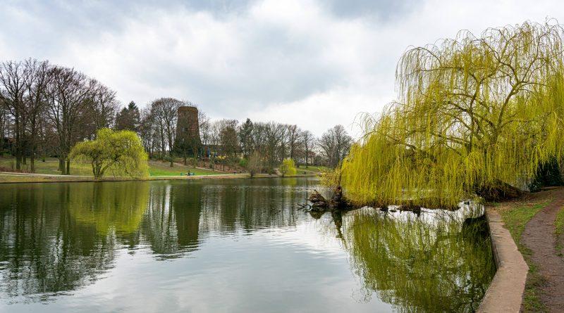 Die schönsten Laufstrecken Berlins: Bei der Drei-Seen-Lauf-Runde bietet sich fast ständig ein tolles Panorama.