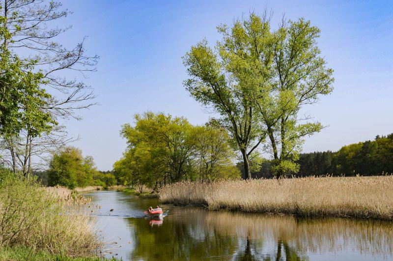 Kleines Motorboot auf der naturbelassenen Spree zwischen Hangelsberg und Fürstenwalde. Foto: Imago/Hohlfeld