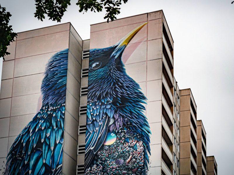 Wandbild von Collin van der Sluijs und Super A Berlin in Tegel.