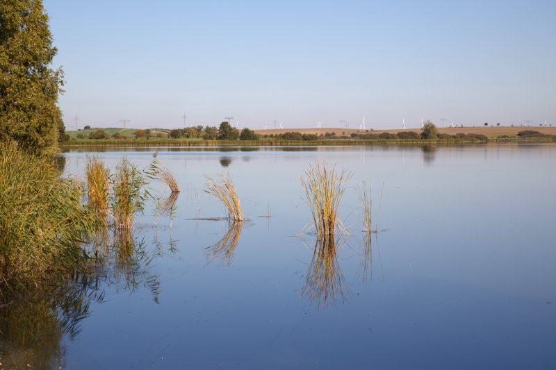 Wer möchte kann am Ende dieser Radtour noch ein Bad im Mündesee bei Angermünde nehmen. Foto: imago images/imagebroker