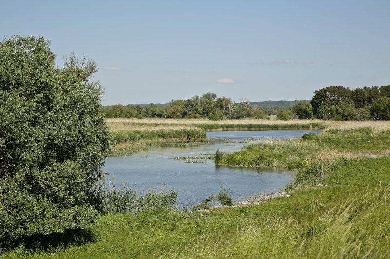 Landschaft des Nationalparks Unteres Odertal bei dem kleinen Ort Stuetzkow, am Ostrand der Uckermark. Foto: imago images/Reiner Zensen