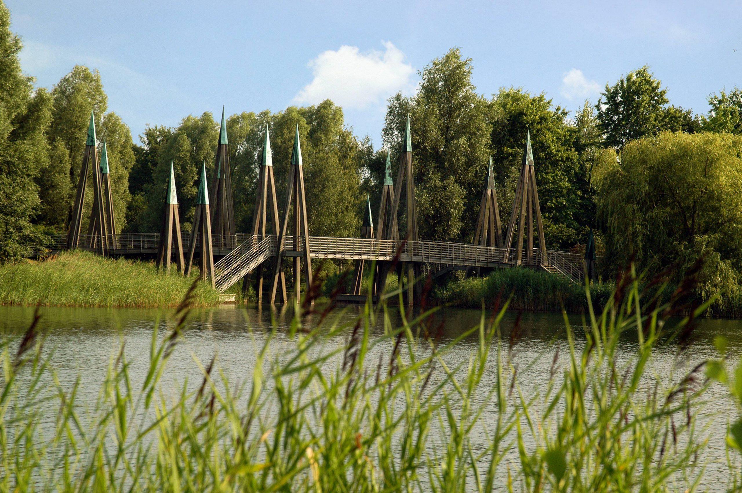 Die sogenannte Rhizomatische Brücke im Britzer Garten begeistert mit ihrem auffälligen Design. Foto: Imago/Boegel