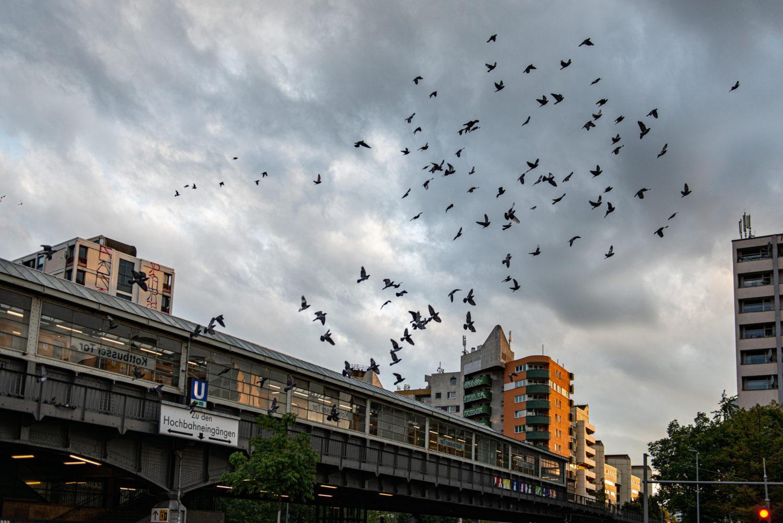 Szenebezirk (fast) ohne Touristen: Die reine Leere. Foto: F. Anthea Schaap