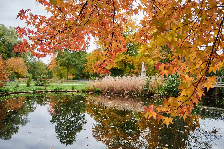 Wer den Spaziergang den Kanal entlang bis zum Tiergarten schafft, wird mit Natur und Entspannung belohnt. Foto: Imago/Snapshot