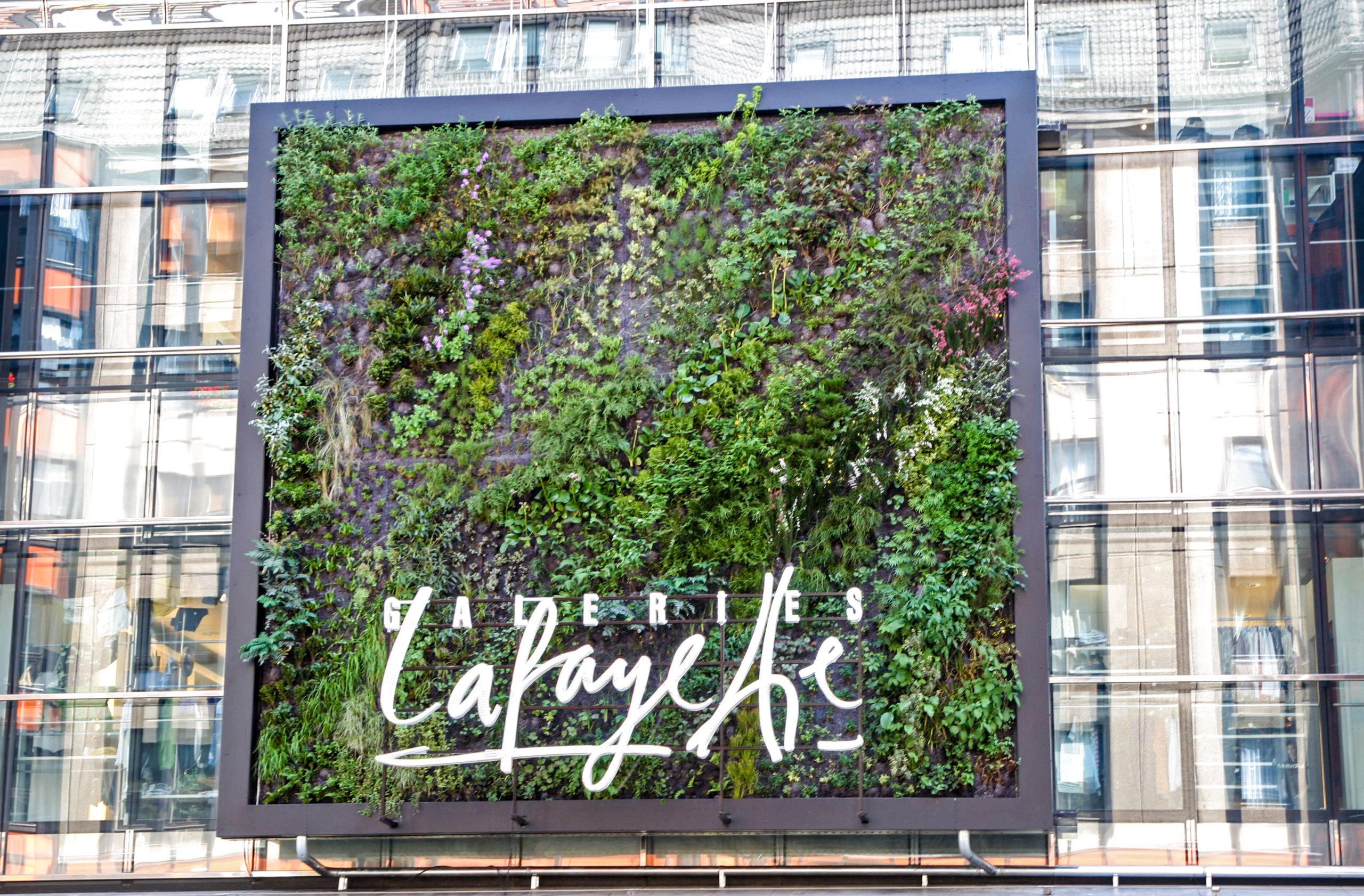 An der Frontfassade der Galeries Lafayette befindet sich ein vertikaler Garten des Pariser Botanikers Patrick Blanc.