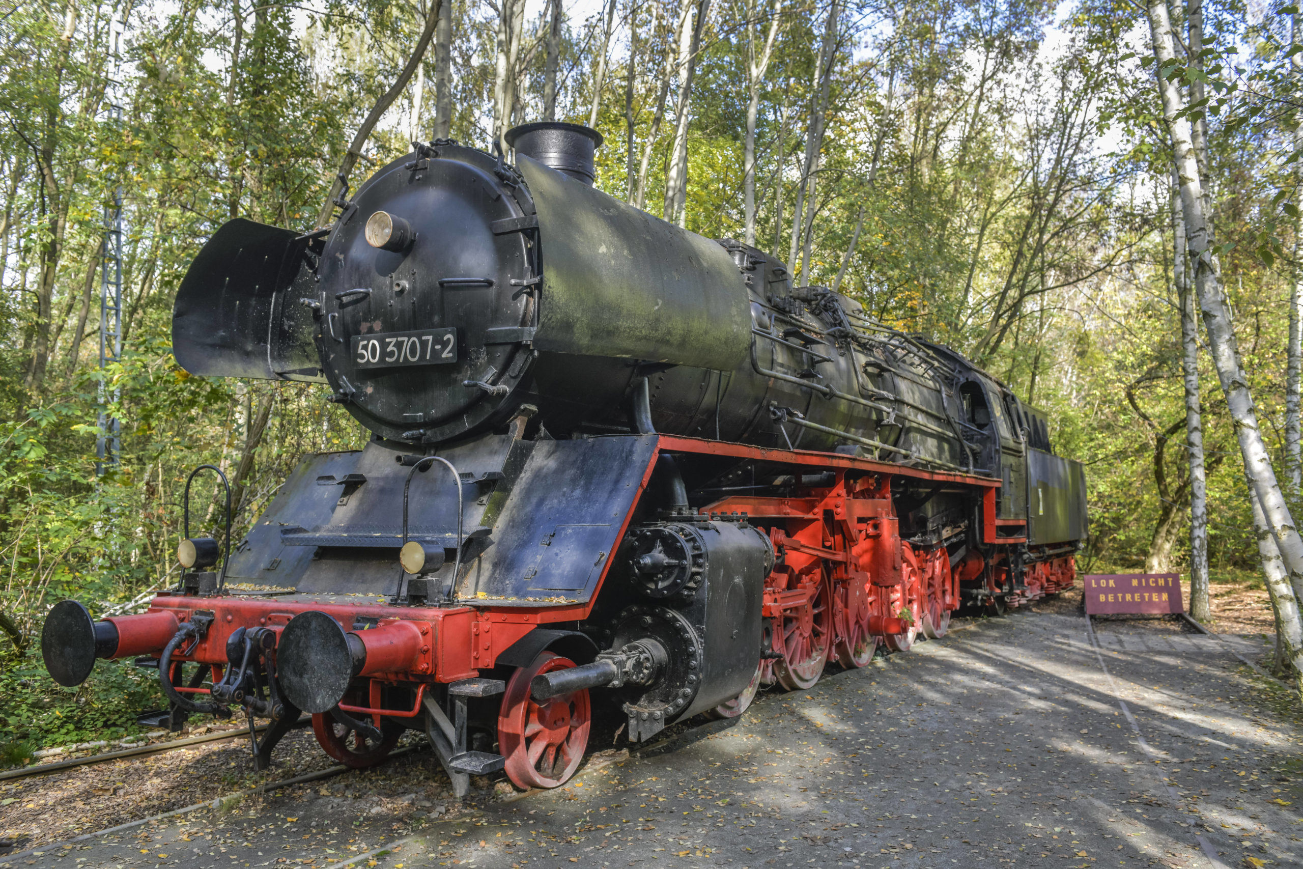 Die ausrangierte Lokomotive im Natur-Park Südgelände erinnert an Zeiten, als hier noch Güterzüge fuhren. Foto: Imago/Schöning