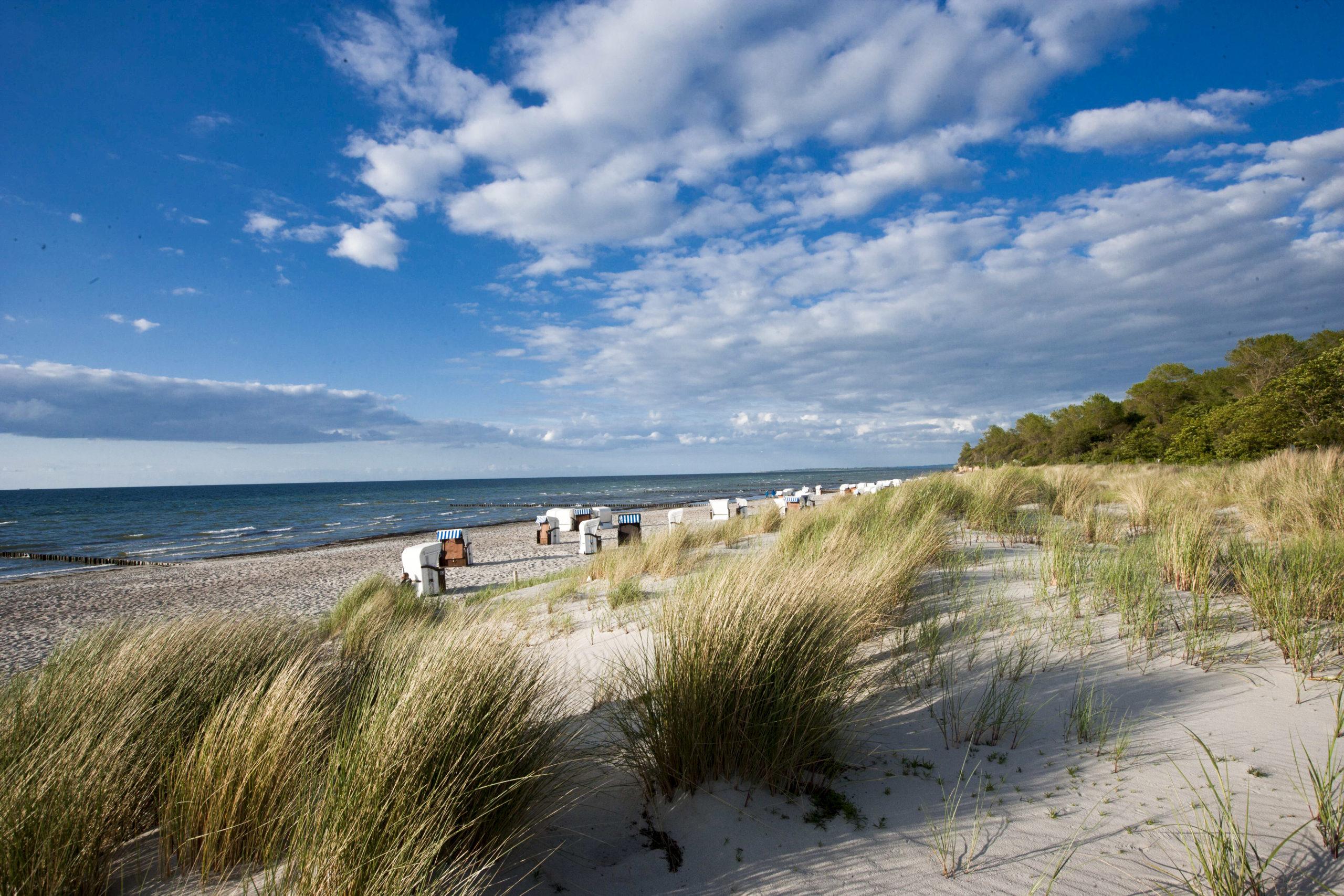 Schönste Strände Ostsee Früher soll sich hier Klaus Störtebeker mit Schiff und Mannschaft herumgetrieben haben, heute ist der Strand Gollwitz Touristen und Anwohner:innen mit seinen weißen Sandbänken.