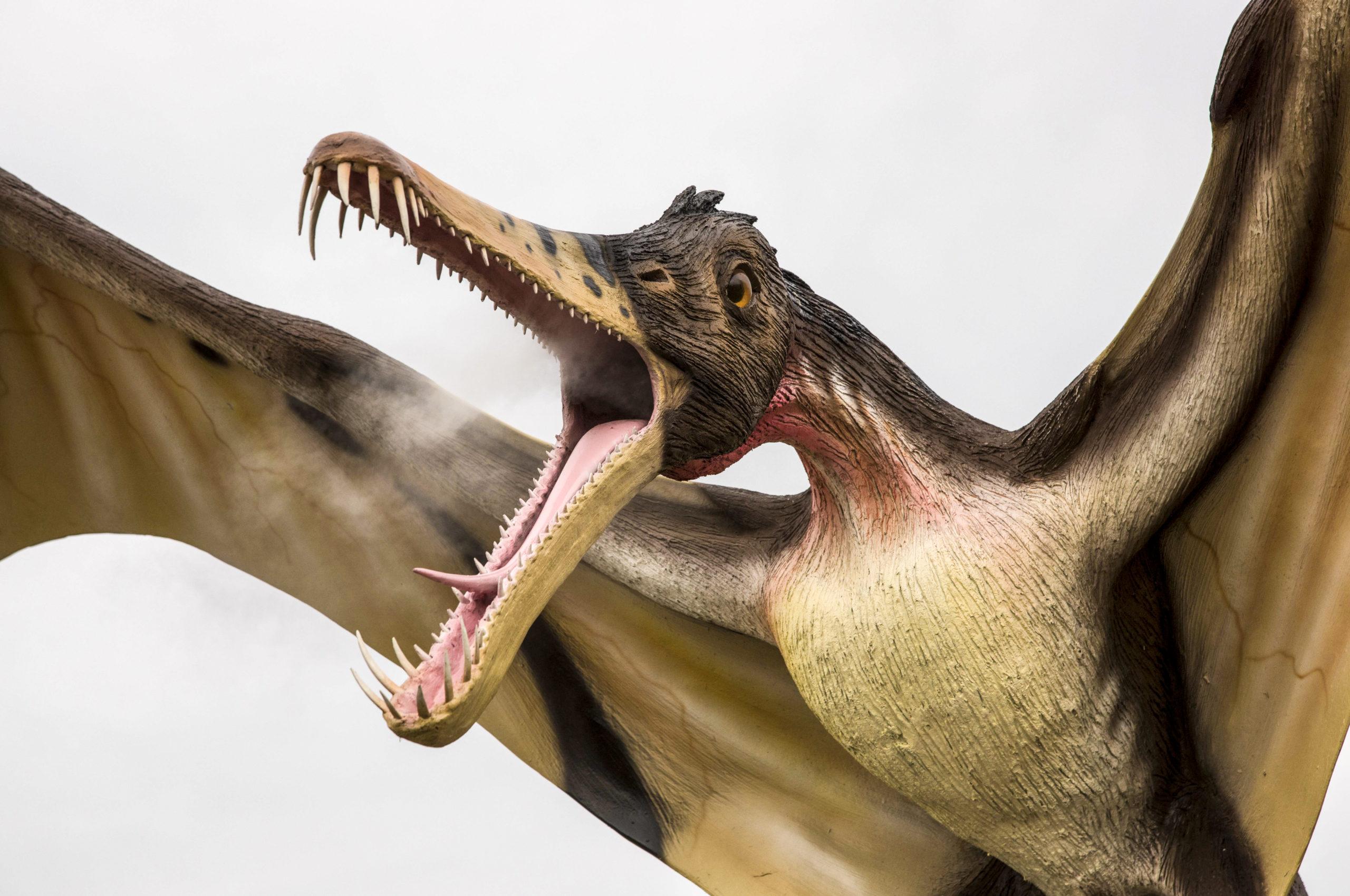 Im Tier- und Freizeitpark Germendorf machen die riesigen Dinosaurierfiguren sogar lebensechte Geräusche.