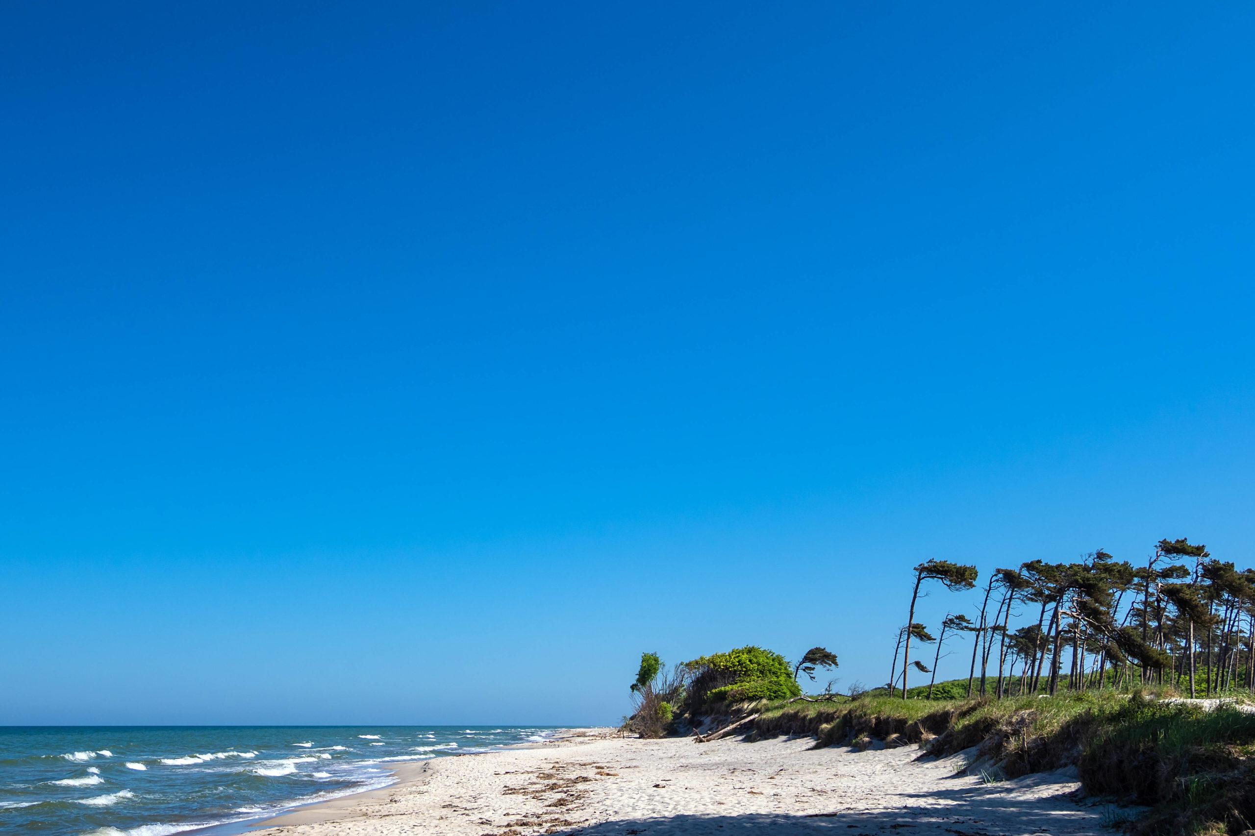 Schönste Strände Ostsee Weißer Sand, sanfte Wellen: Der Weststrand auf Rügen glänzt dank seiner naturbelassenen Schönheit.