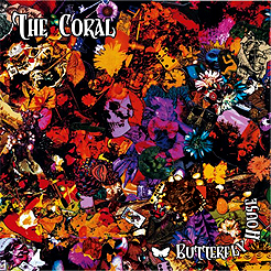 The Coral: Buttefly House